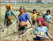 tharu-women-fishing-2.jpg